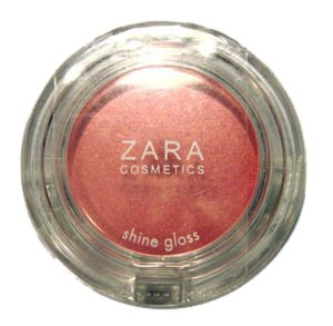 Zara Lip Gloss with Brush