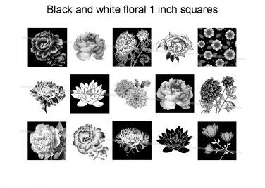 Black and white flowers theme 1 inch squares 4x6 digital collage sheet