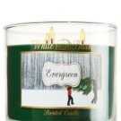 Bath and Body Works White Barn 3 Wick 14.5 Oz Candle (Evergreen)