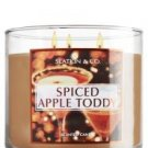 Slatkin & Co. Spiced Apple Toddy 14.5 oz 3-Wick Candle