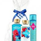 Lot of 4 - Bath & Body Works Morocco Orchid and Pink Amber 8oz Lotion 8.4oz Mist