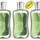 Bath & Body Works Rainkissed Leaves Shower Gel Set of Three 10oz