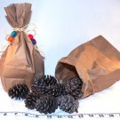 BAG O' PINECONES FORAGING! bird toy parrot toys parts