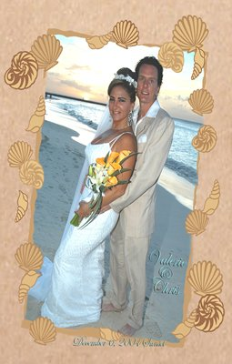 Sandy Shells One Main Photo Wedding Photo Thank You Card