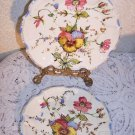 PANSY Plates 2 Italian Pottery Vintag Romantic Prairie Cottage Country Chic RARE