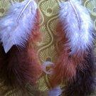 Earth Toned Feather Earrings