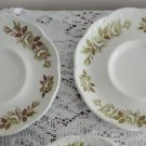 Vintage Colonial Garden Made in England 2 Saucers Green Design