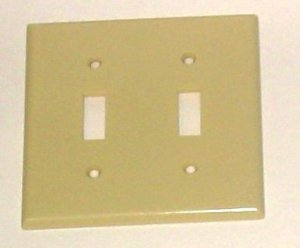 Double Switch Plate Ivory