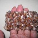 NEW Light Brown Stoned Bracelet