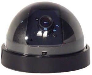 Pro Series Black & White Wired Mini Dome Camera