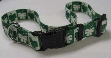 Dog Collar - Shamrock - size Large