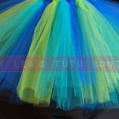 'DRAGONFLY' teen girls tutu
