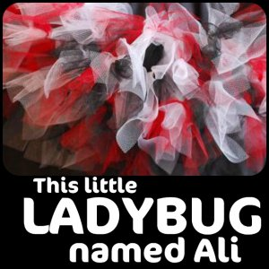This little Ladybug named Ali | baby girls petitu tutu
