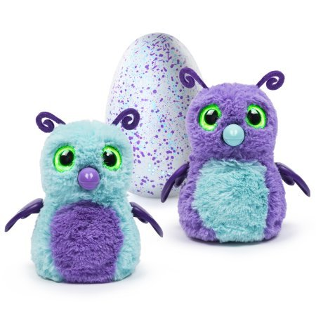 Hatchimals Burtle - Purple/Teal Egg can�t hatch without you!