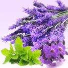 Mint Lavender GB