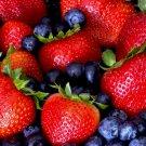 Berrylicious SS2