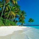 Paradise Bay GS1