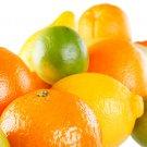 Citrus Splash BS2