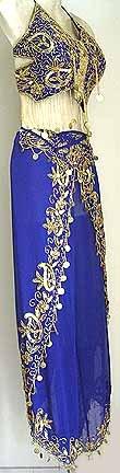 Harem Pant Blue Belly Dancer Costume Dress B