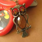 Transparent belly owl necklace