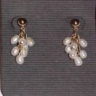 Lauren Conrad Genuine Freshwater White Pearl Dangle Earrings