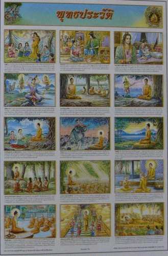 Buddha Chronology Buddhism History Education Poster Collection Gift Meditation