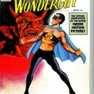 Wonderguy graphic novel 1992