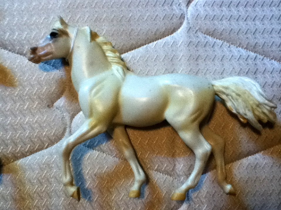 Blue Ribbon Horse White