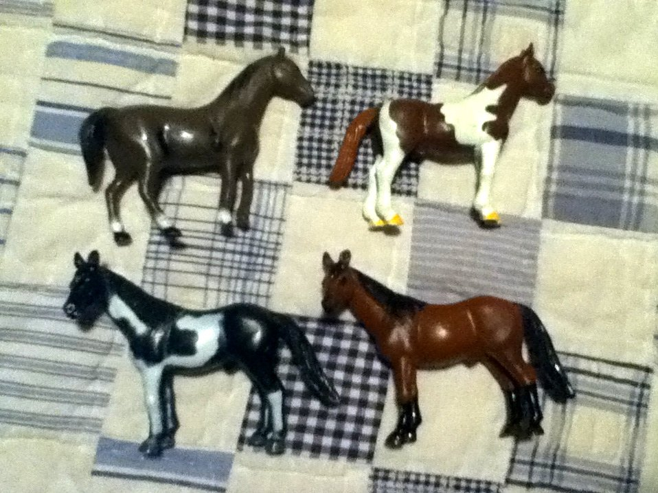 Small Horse Lot