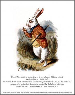 Alice in Wonderland: Down the Rabbit Hole Rectangular Keyhole Necklace