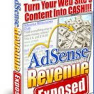 AdSense Revenue Exposed - Increase Your Revenue