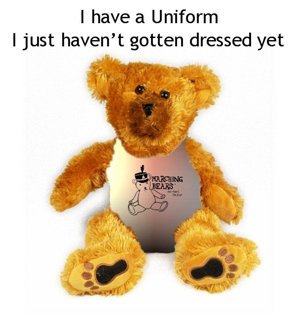 Burlington Township HS Marching Band Uniform Teddy Bear