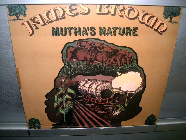 JAMES BROWN mutha's nature LP 1977 SOUL MUSIC EXCELENTE MUITO RARO VINIL