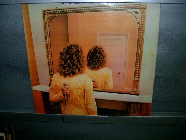ROGER DALTREY one of the boys LP 1977 ROCK MUITO RARO VINIL