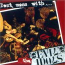 EVIL IDOLS don't mess with the evil idols CD ? PUNK ROCK
