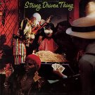 STRING DRIVEN THING string driven thing MINI VINYL CD 1972 PROGRESSIVE ROCK
