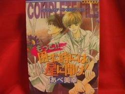 Motto Komatta toki ni wa Hoshi ni Kike! guide art book