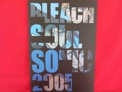 BLEACH 'SOUL SONIC 2005 SUMMER' guide art book