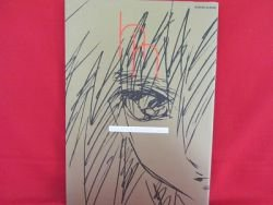 Hisashi Hirai #1 illustration art book /Gundam Seed