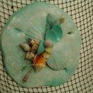 Sand Dollar Plaque (light turquoise)
