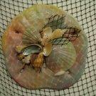Sand Dollar Wall Plaque (nautical tye dye)