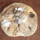 Sand Dollar Wall Plaque Tan w/ Fish Accent