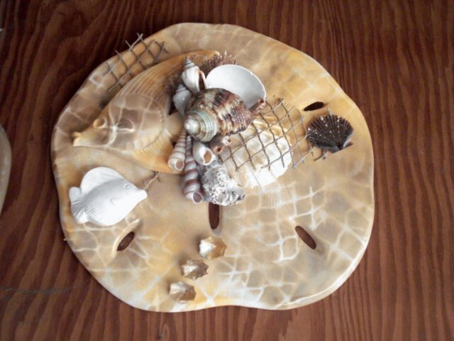 Sand Dollar Wall Plaque Tan With Net