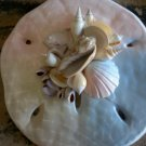 Sand Dollar Wall Plaque Multi Color green/blue