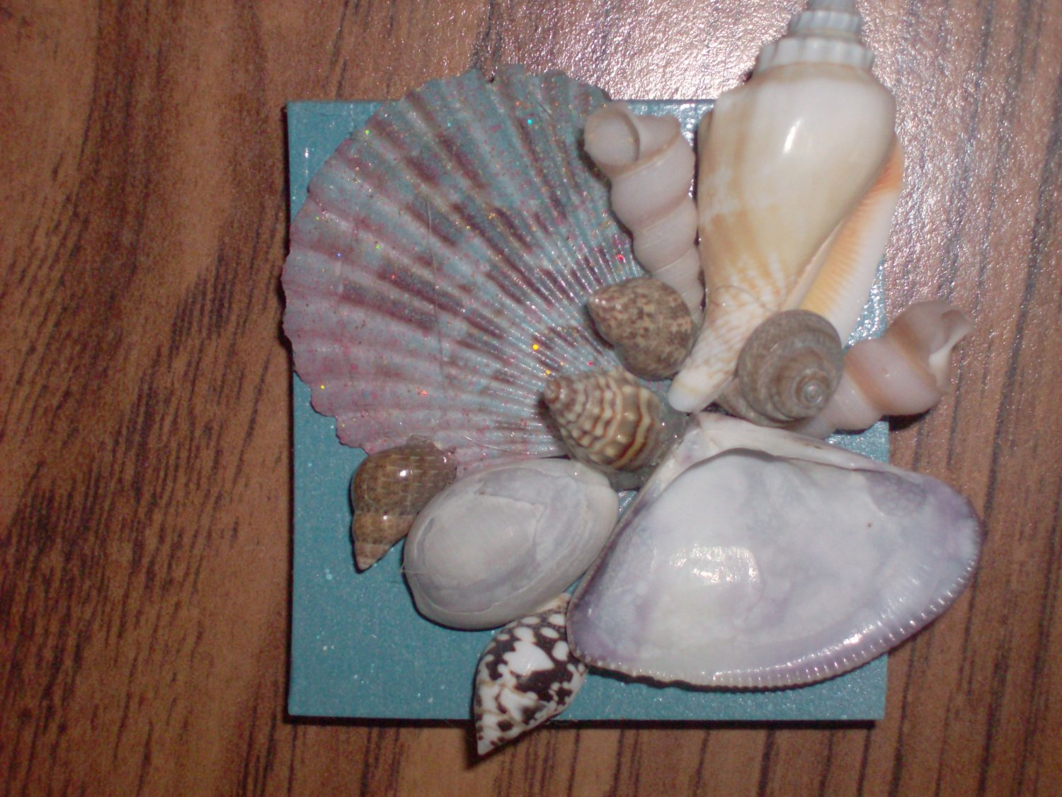 Magnet Blue Background w/multi color large Shell