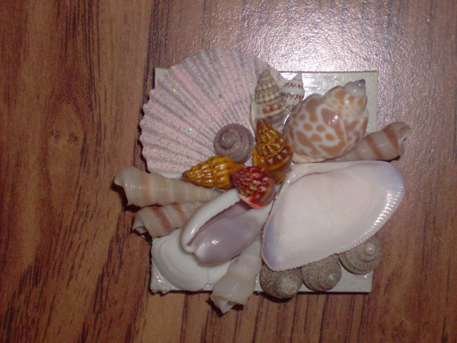 Magnet Tan Background with light pink large shell Multi color center shells