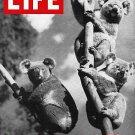 Life January 10 1964