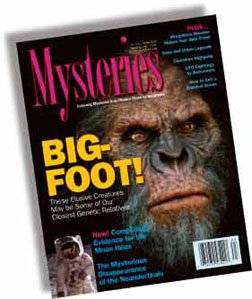 Issue #14 of Mysteries Magazine