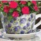 Lavender Rose Teacup Planter