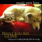 Bradley Joseph MUSIC PETS LOVE - WHILE YOU ARE GONE - CD FOR CATS DOGS